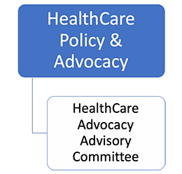 Health Care Policy & Advocacy Standing Committee