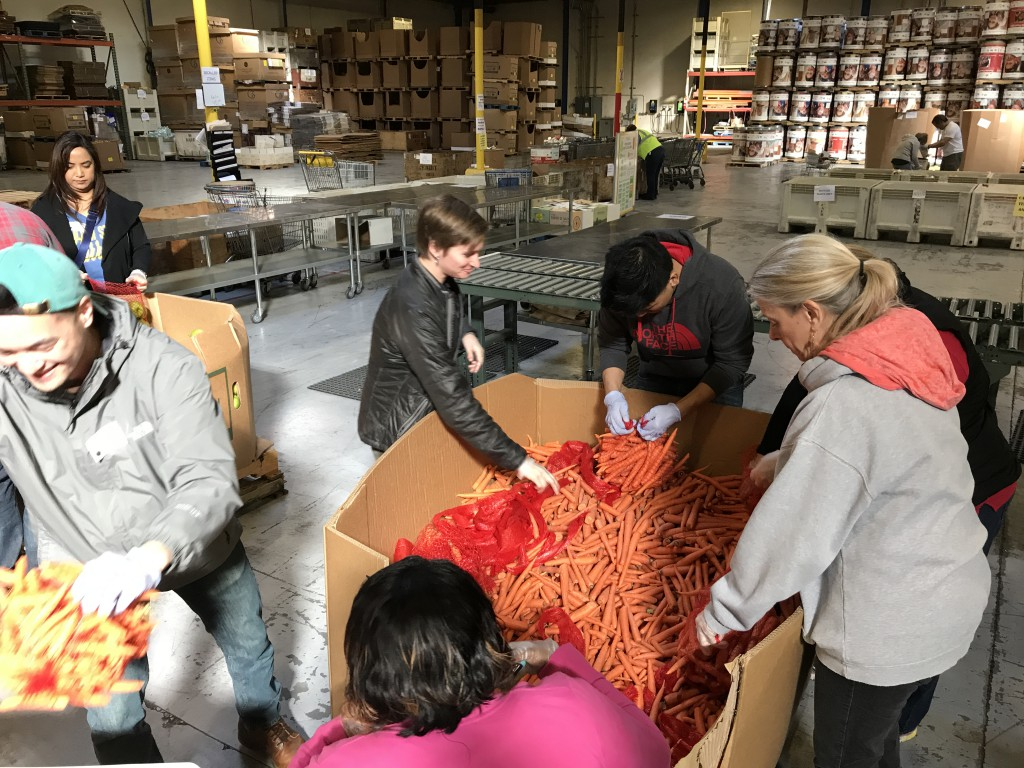 AVLS Staff Volunteer at Local Food Bank